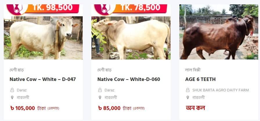 DNCC Digital Haat, DNCC Digital Cow Haat 2021